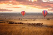 balloon-safari-mara-1