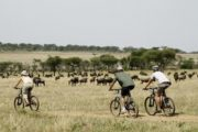 Kenya Cycling Biking Safari Adventures