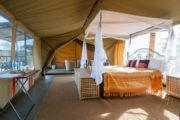 serengeti-wildebeest-camp-