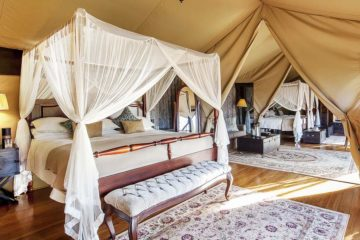 11 Days Elewana Luxury Holiday Safari Package