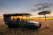 11 Days Elewana Luxury Safari Package