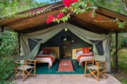 3 Days Masai Mara Camping Safari