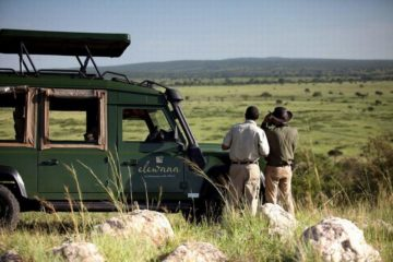 4 Days Elewana luxury Safari Package