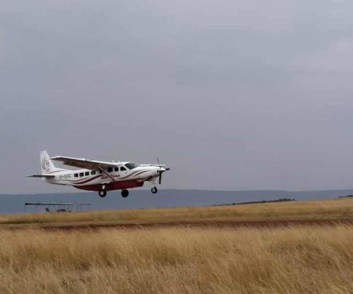 4 Days Lewa Conservancy Fly-in Safari