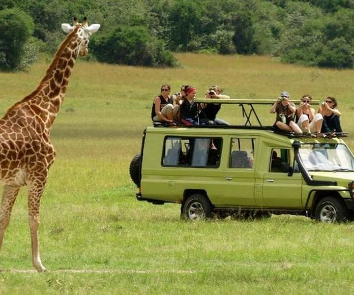 4 Days Tanzania Camping Safari Adventures