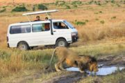 5 Days Kenya Holiday Lodge Safari Package