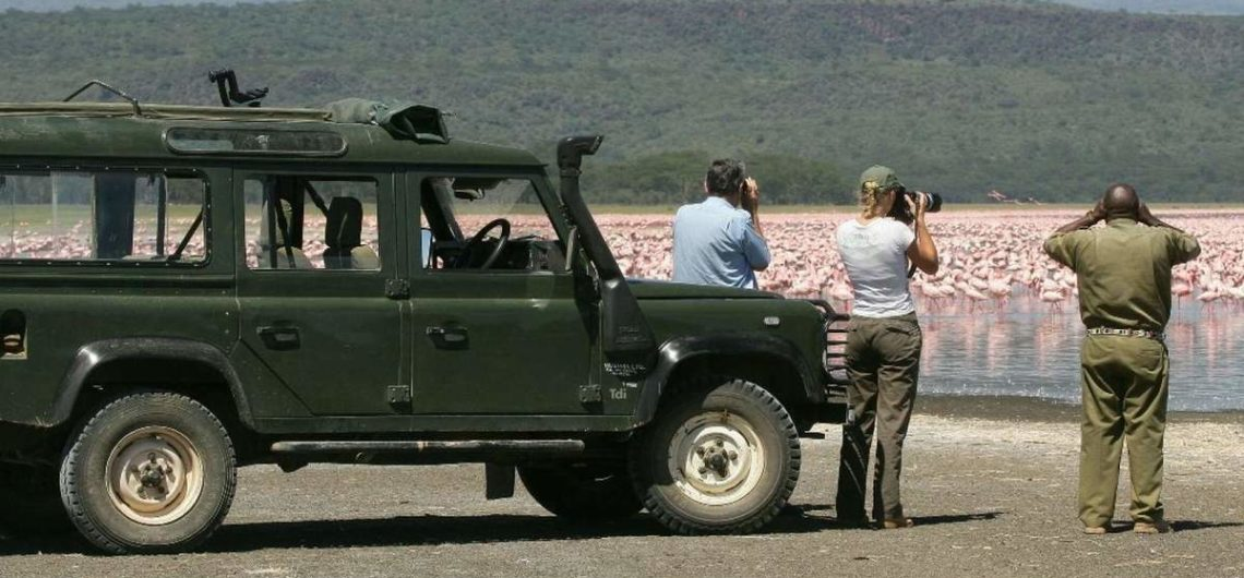 Africa Birding Safari Holiday Tours
