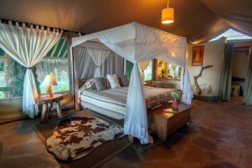 10 Day Kenya Tanzania Luxury Safari Vacation