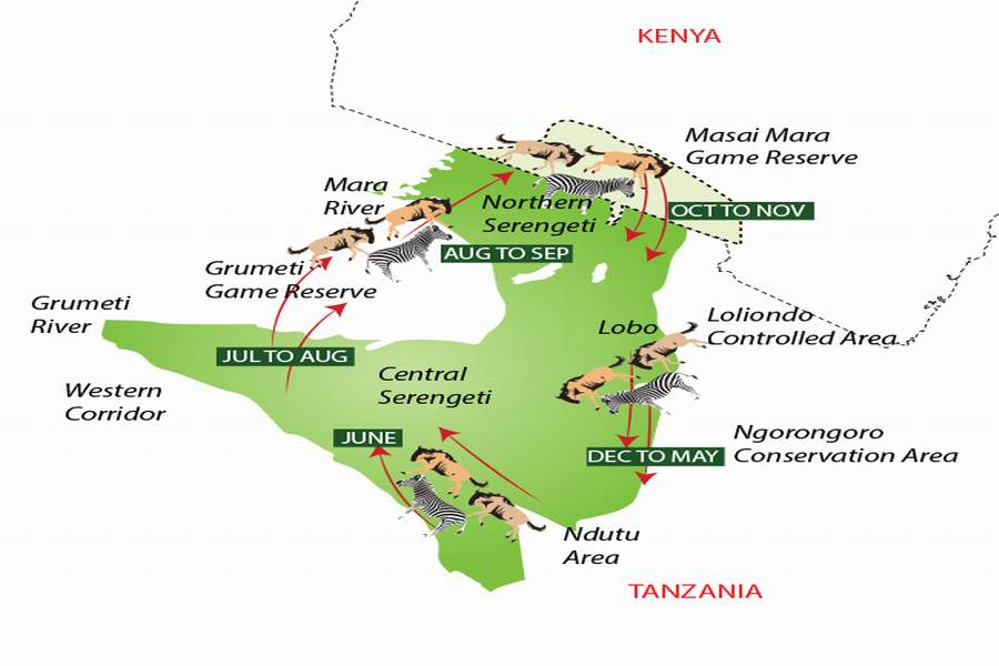 10 Days Serengeti Wildebeest Migration Safari Holiday