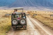 11 Day Tanzania Photographic Safaris