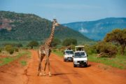 7 Days Eastern Kenya Safari Experience