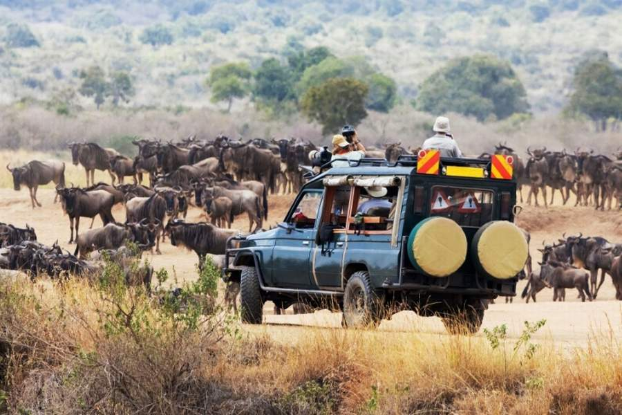 9 Days Kenya Tanzania Wildebeest Migration Holiday