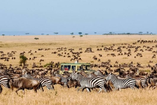 9 Days Kenya Tanzania Wildebeest Migration Tour