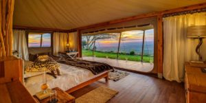 Elewana Africa Luxury Safari Collection