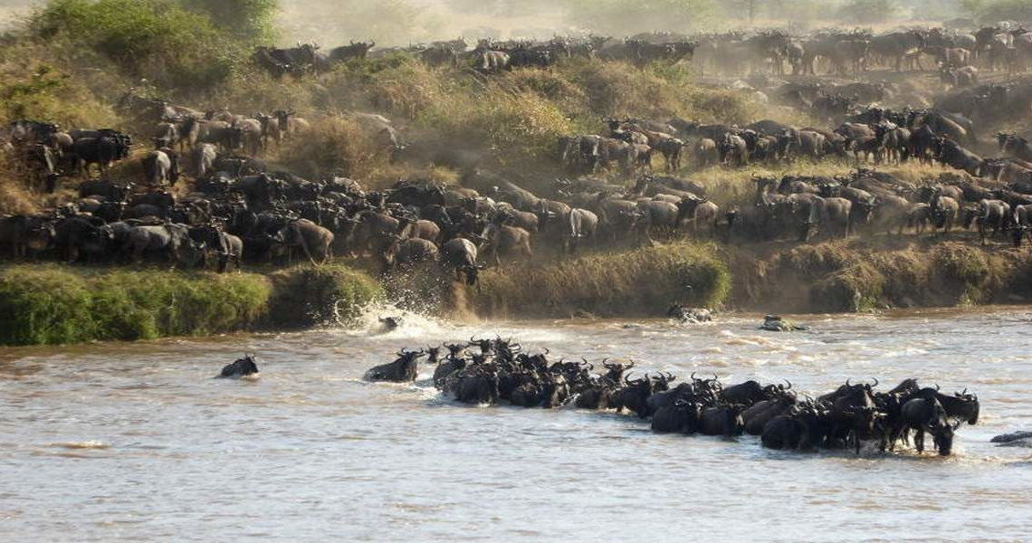 Kenya Tanzania Wildebeest Migration Holiday