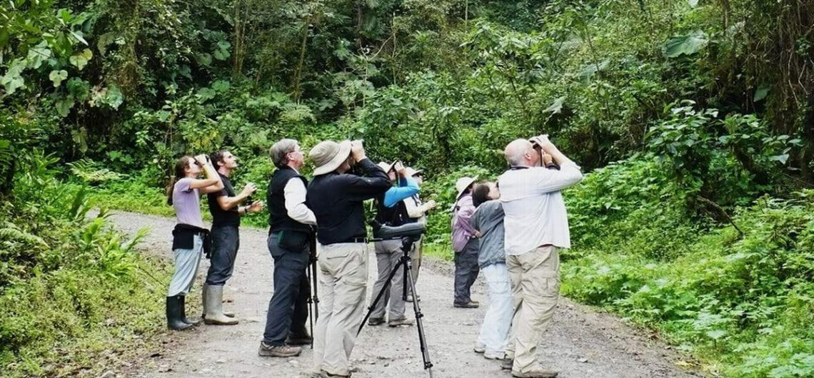 kenya bird watching safari package